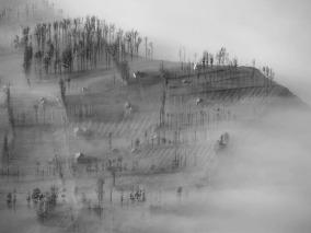 Misty Morning at the Village