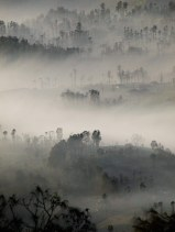 Misty Morning view of Mt.Bromo